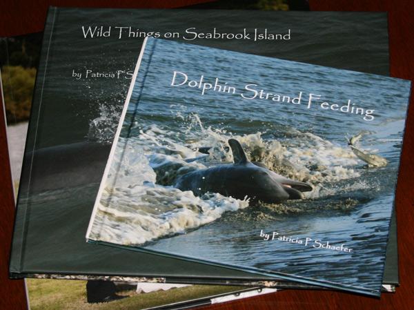 book-dolphin-strand-feeding