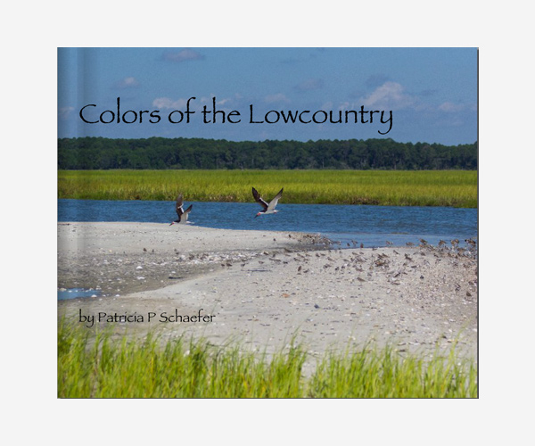 lowcountry-book